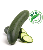concombre-bio