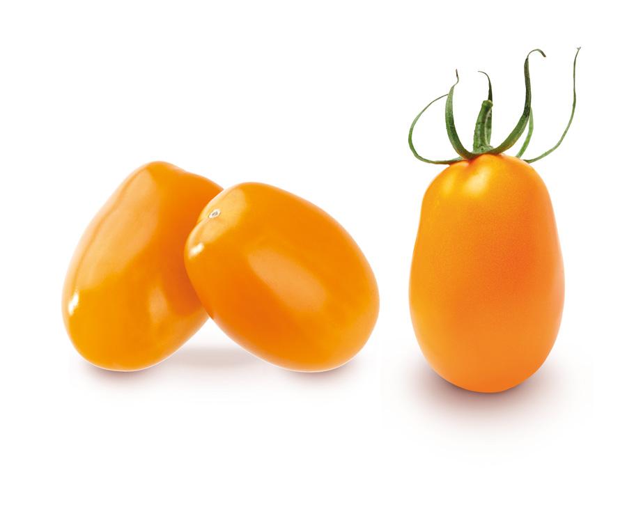 tomate-cerise-allongee-jaune
